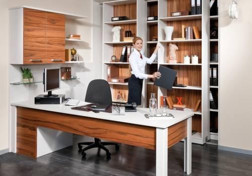 Domácí pracovna / Kancelářský nábytek 26