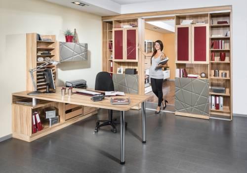 Domácí pracovna / Kancelářský nábytek 35